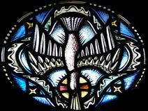 Duvan (helig ande) i målat glass royaltyfri bild