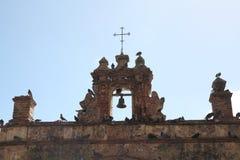 Duvan parkerar i den gamla staden, San Juan royaltyfri fotografi