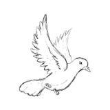 Duvasymbol Fågel- och freddesign som stylized swirlvektorn för bakgrund det dekorativa diagrammet vågr royaltyfri illustrationer
