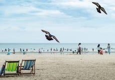 Duvor flög, stolar på stranden och oskarpa turister royaltyfria bilder