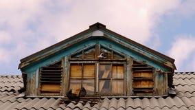 Duvor nära vindskupefönstret av det gamla huset arkivfoto