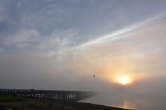 Duxbury ` s proszka punktu most w mgle przy wschodem słońca Obrazy Royalty Free
