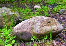 duży kamień Obraz Royalty Free
