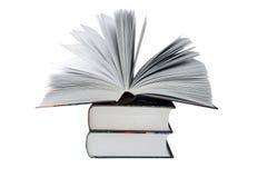 duży książki Obrazy Stock