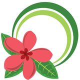 duży okręgu koloru kwiatu rama tropikalna Obrazy Royalty Free