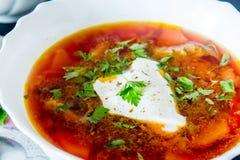 Duży puchar borscht z kwaśną śmietanką i ziele Zdjęcie Royalty Free