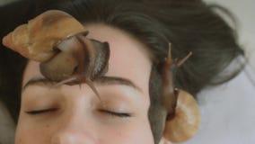 Duzi ślimaczki na twarzy Młoda kobieta przy zdrojem otrzymywa twarzowego masaż z ślimaczkami Achatina Ślimaczki jedzą nieżywą skó zdjęcie wideo