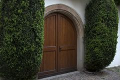 Duzi brown krzaki i drzwi obrazy royalty free