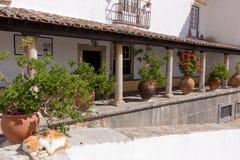 Duzi ceramiczni garnki między kolumnami przy tarasem stary dom obrazy royalty free