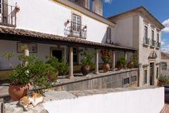 Duzi ceramiczni garnki między kolumnami przy tarasem stary dom fotografia royalty free