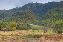 Duzi Dziewięć jezior Hubei Shennongjia las fotografia royalty free