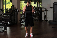Duzi mężczyzna ćwiczenia bicepsy Z Barbell Obrazy Royalty Free