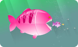 duzi pojęcia jedzą rybie serie małe Fotografia Royalty Free