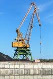Duzi przemysłowi schronienie żurawia stojaki na wybrzeżu w porcie Obraz Royalty Free