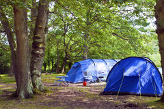 Duzi rodzinni namioty w campingowym miejscu w lesie Zdjęcia Stock