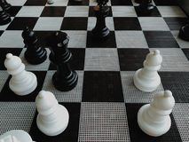 Duzi szachowi kawałki zdjęcie royalty free