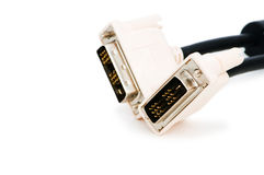 DVI cable isolated on the white Stock Photography