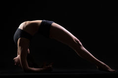 Dvi Pada Viparita Dandasana. Beautiful cool young fit woman in sportswear doing sport exercise, Two-Legged Inverted Staff Pose, Upward Facing Two-Foot Staff Stock Photos