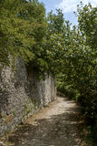 Dvigrad, μεσαιωνική πόλη σε κεντρικό Istria, Κροατία στοκ φωτογραφίες