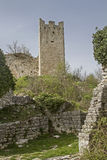 Dvigrad in Istria stock images