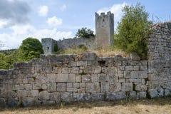 Dvigrad medeltida stad i centrala Istria, Kroatien Royaltyfri Bild