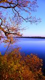 Dvina occidentale de fleuve en automne Images libres de droits