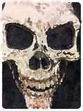 DW skull. Digital watercolor painting of a skull Royalty Free Stock Photography