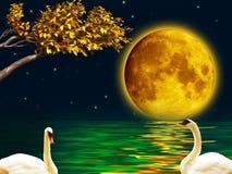 Dwa łabędź w księżyc w pełni nocy ilustracja wektor
