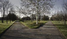 Dwa ścieżki Zdjęcie Royalty Free