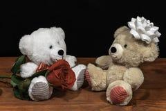 Dwa ślicznego milutkiego misia z pojedynczego czerwieni róży iand białym łękiem na drewnianym stole na ciemnym tle fotografia royalty free