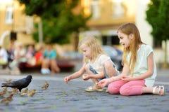 Dwa ślicznej małej siostry karmi ptaki na letnim dniu Dzieci karmi gołębie i wróble outdoors Fotografia Stock