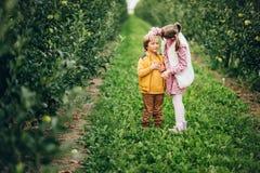 Dwa śmiesznego dzieciaka bawić się w zielonym jabłczanym sadzie Obrazy Royalty Free