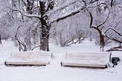 Dwa śnieżystej ławki obrazy royalty free