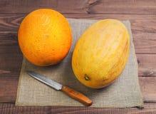 Dwa świeży dojrzały melon zdjęcia stock