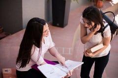 Dwa żeńskiego ucznia przygotowywa dla egzaminów wpólnie outdoors Zdjęcie Stock