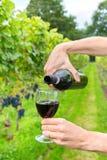 Dwa żeńskiej ręki nalewa wino w spadku winnicy Obraz Royalty Free
