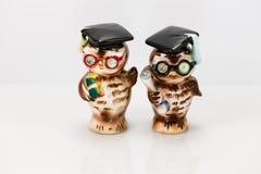 Dwa absolwentów solankowego i pieprzowych sowa potrząsacza Obraz Stock