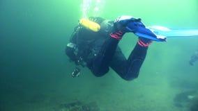 Dwa akwalungu nurek na tle podwodnym odbicia światło słoneczne zbiory