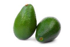 Dwa avocados na białym tle Para smakowici i świezi avocados organiczne warzywa guacamole Obraz Stock