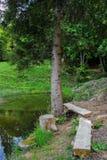 Dwa ławki i jezioro zdjęcie royalty free