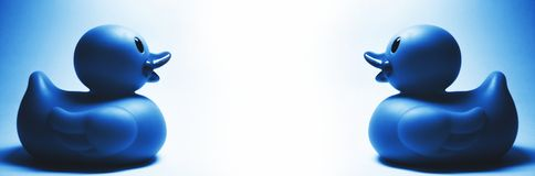 Dwa błękitny gumowej kaczki Zdjęcia Royalty Free