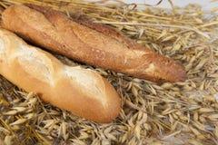 Dwa biel baguette domowej roboty chleb na stole z żyto owsami i spikelet obrazy royalty free
