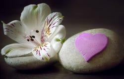 Dwa biel kamień z kwiatem i sercem na drewnianym tle, zdrój Zdjęcie Stock
