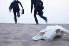Dwa biznesmena biega zdala od zwierzęcej czaszki po środku pustyni Fotografia Royalty Free