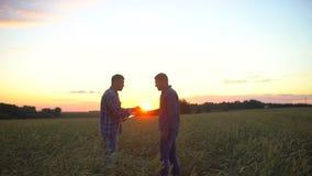 Dwa biznesmena rolnika trząść ręki w pszenicznym polu przy zmierzchem, używać pastylka komputer, kontrakta uścisku dłoni dylowa i zdjęcie wideo