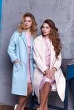 Dwa biznesowej kobiety damy pięknego stylu perfect ciało Zdjęcia Stock