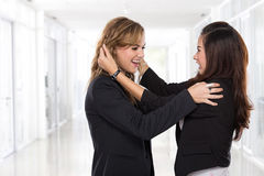 Dwa bizneswomanów azjatykci walczyć Obraz Stock