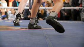 Dwa boksera walczą w bokserskim pierścionku w bokserskich shoeses Niska sekcja męska bokser pozycja przeciw arbitrowi atletą obrazy royalty free