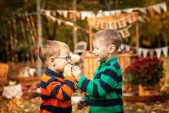 Dwa brata w jesień parku Zdjęcie Stock