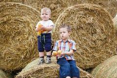 Dwa brata w wsi Obraz Stock